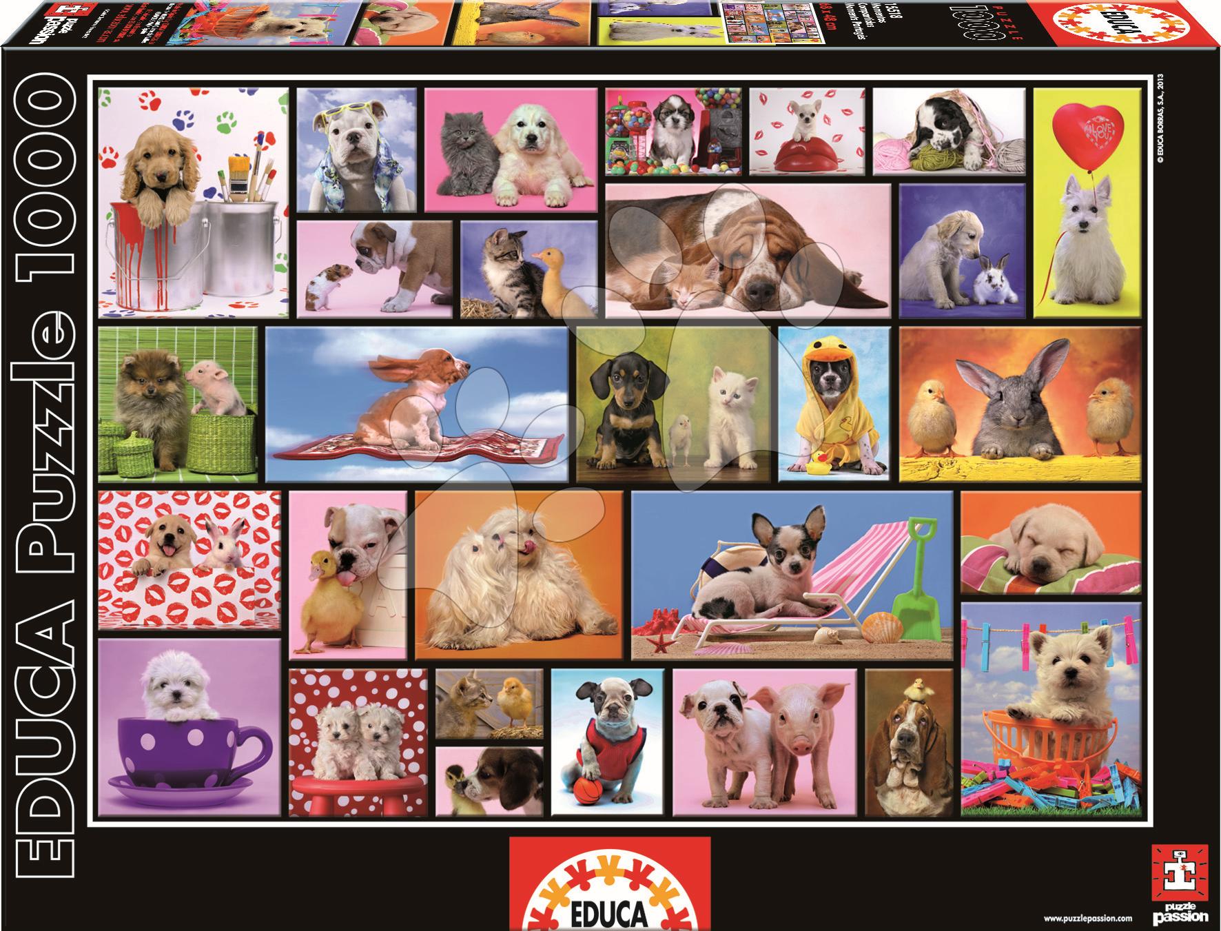 Puzzle Shared Moments Educa 1000 dílů od 12 let