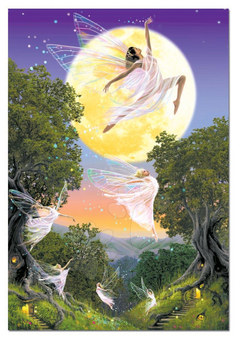 Puzzle 1000 dílků - Puzzle Dance of the moon Fairy Educa 1000 dílů
