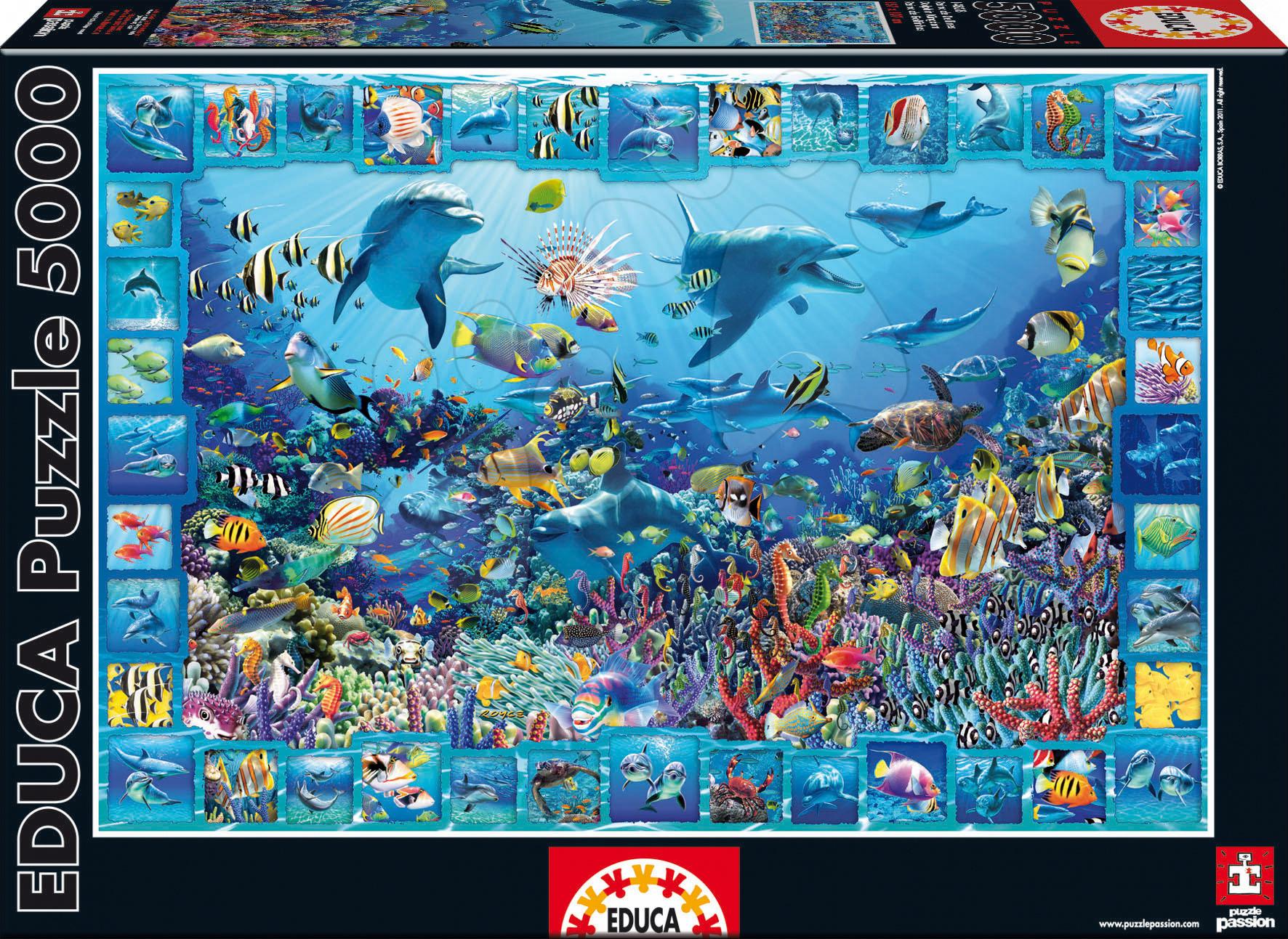 Puzzle Dolphin Kingdom Educa 5000 dílků