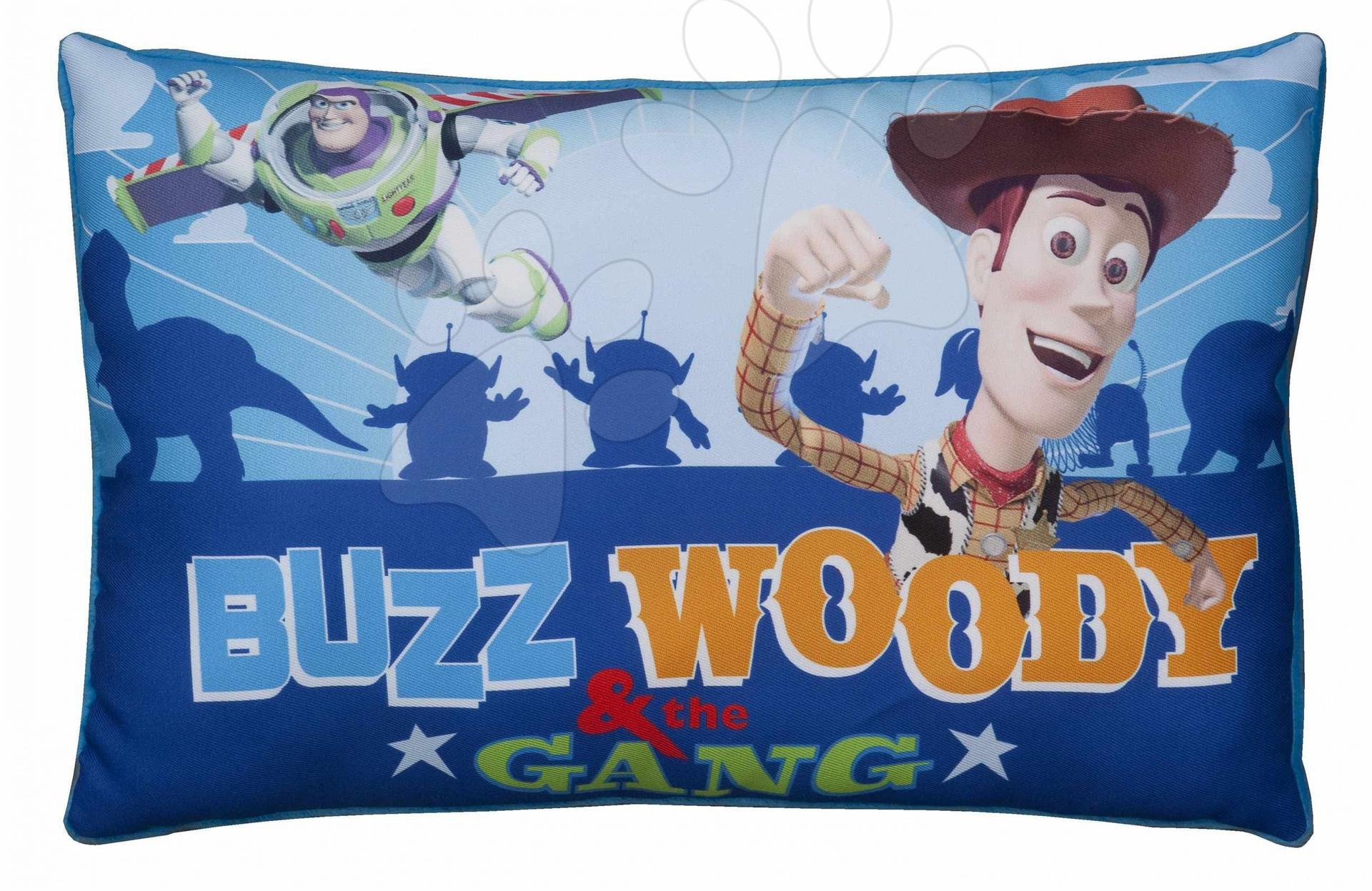 Polštářek WD Toy Story Ilanit obdélníkový