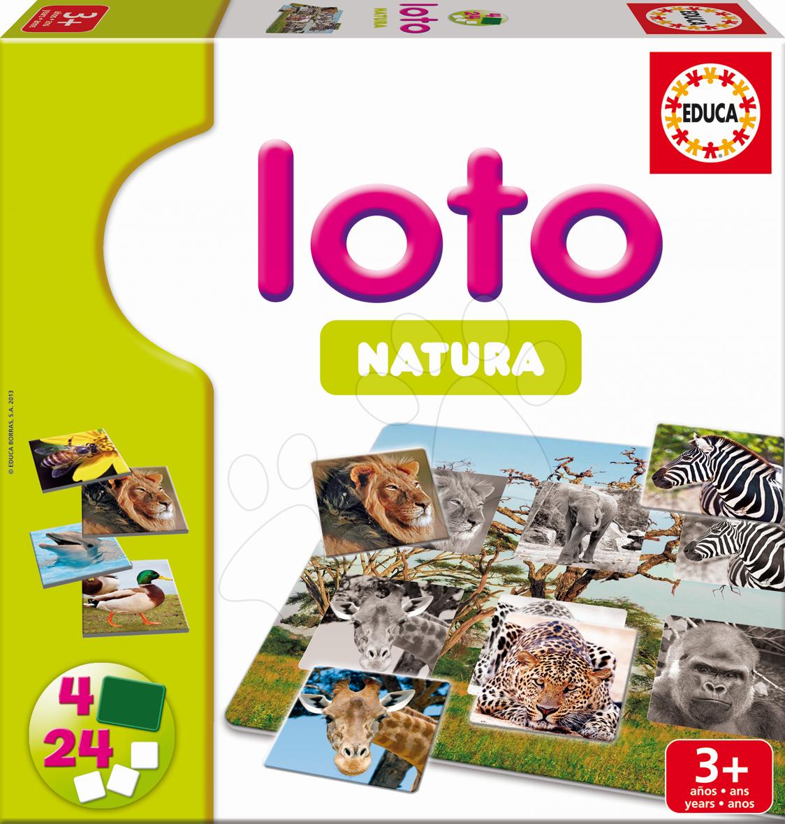 Domino a Lotto - Hra Loto Natura Safari Educa 24 dielov