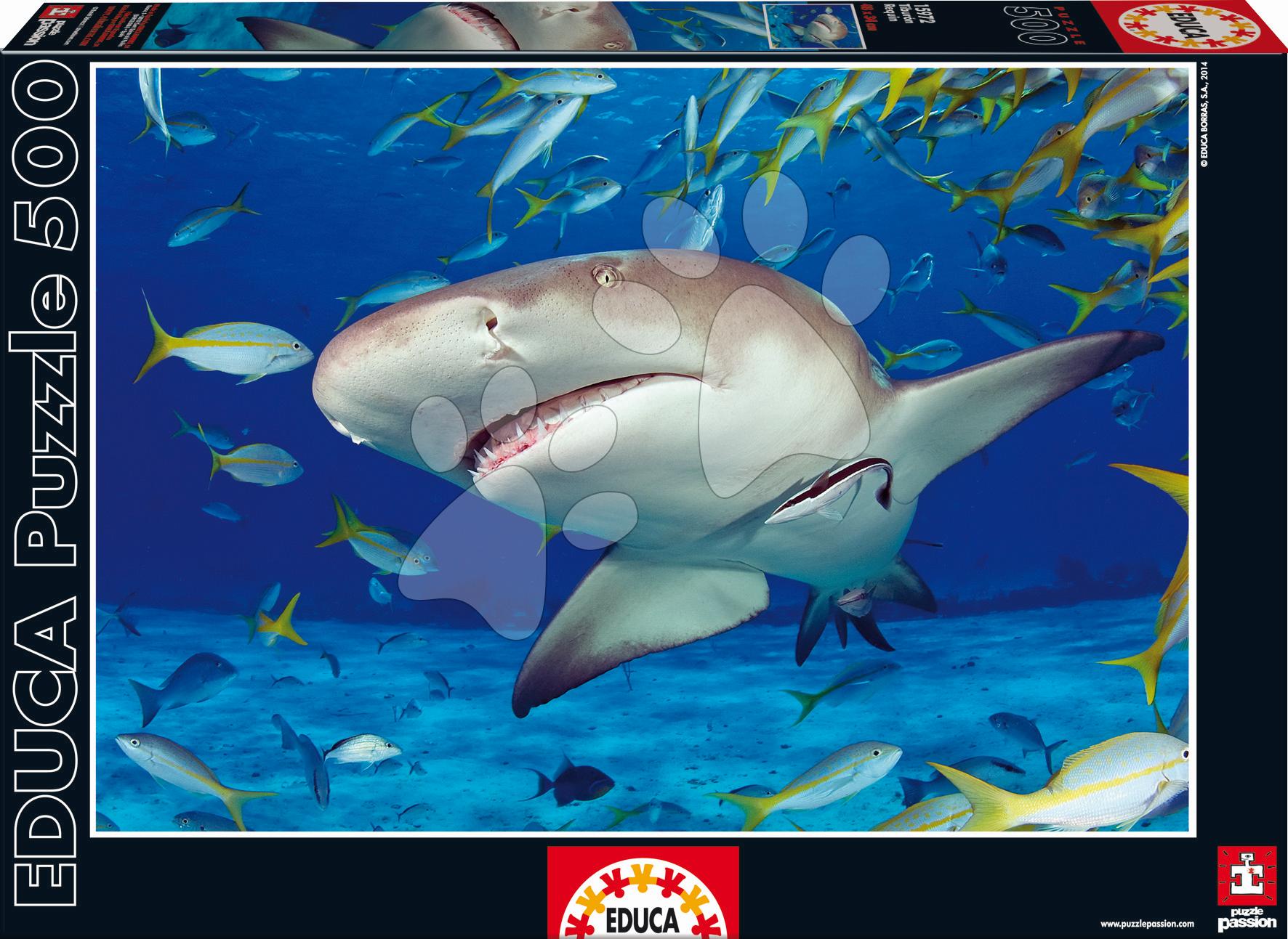 Puzzle Genuine Žralok Educa 500 dílů od 11 let
