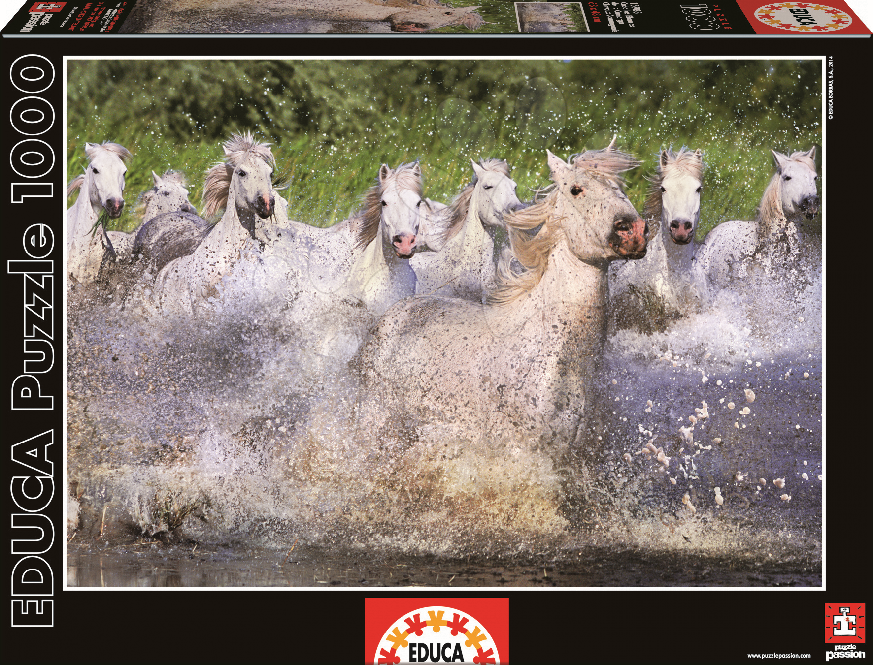 Puzzle Genuine White Camargue Horses Educa 1000 dílů od 12 let