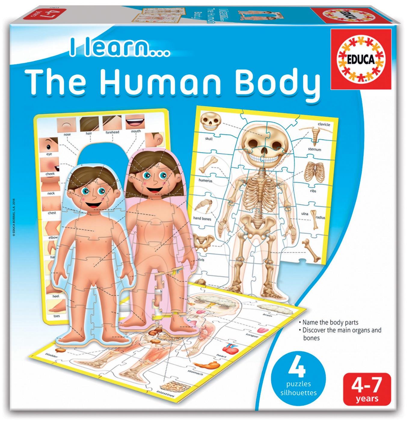 Naučná hra Učíme se Naše tělo 4 puzzle Educa v angličtině od 4 let