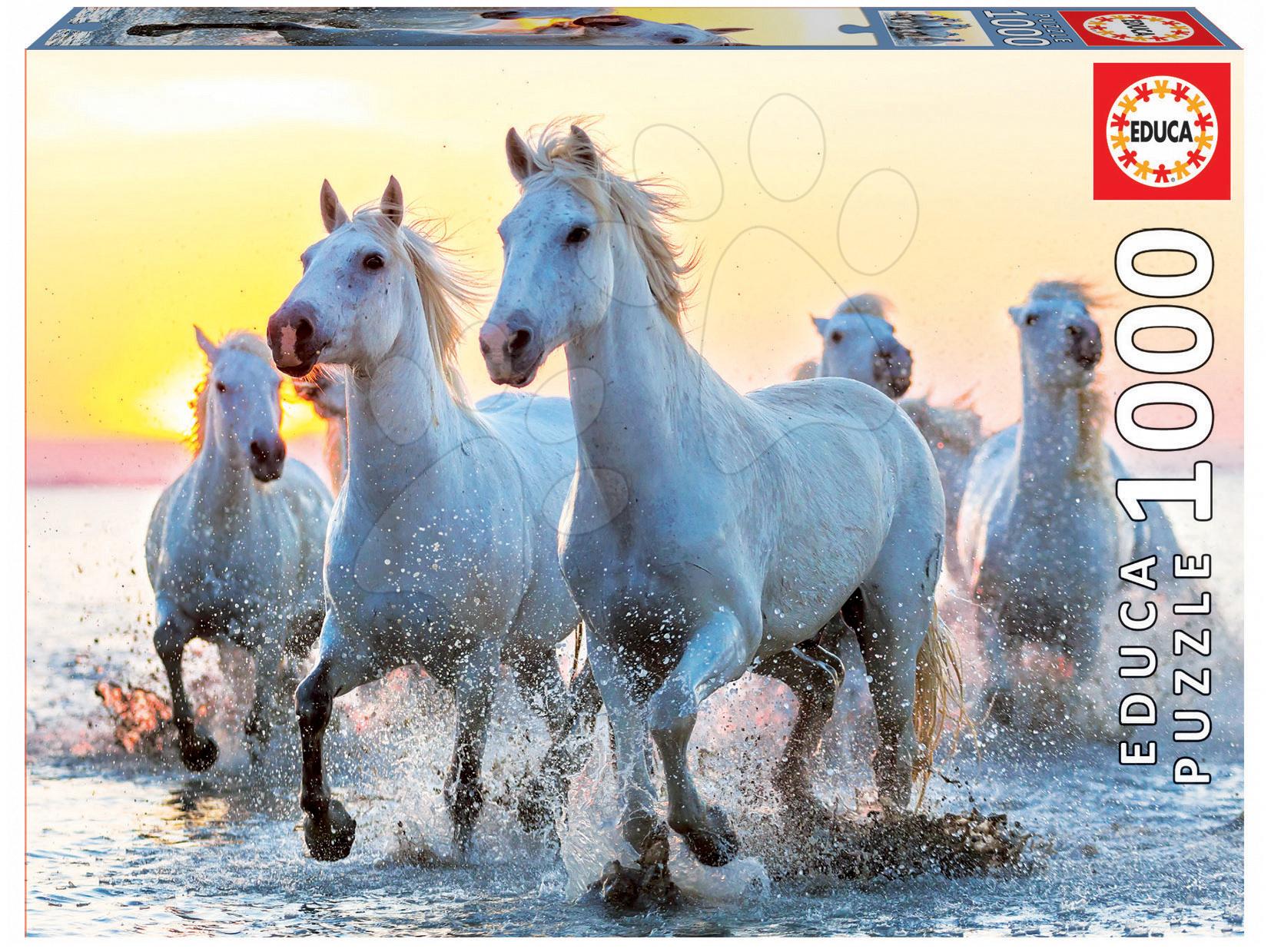Puzzle Genuine White Horses at Sunset slunce Educa 1000 dílů od 11 let