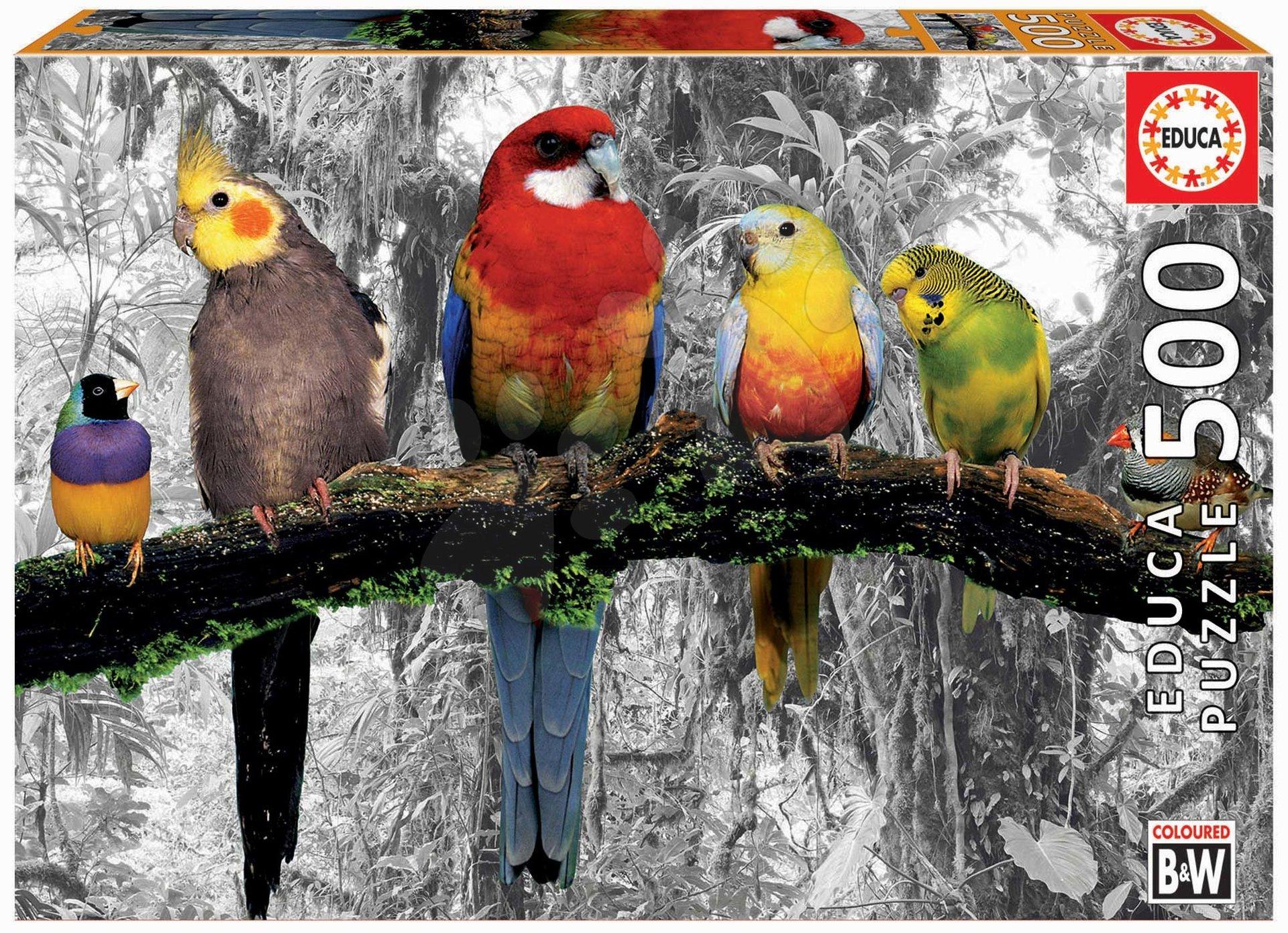 Educa puzzle black and white Birds in the Jungle 500 dielov a fix lepidlo 17984