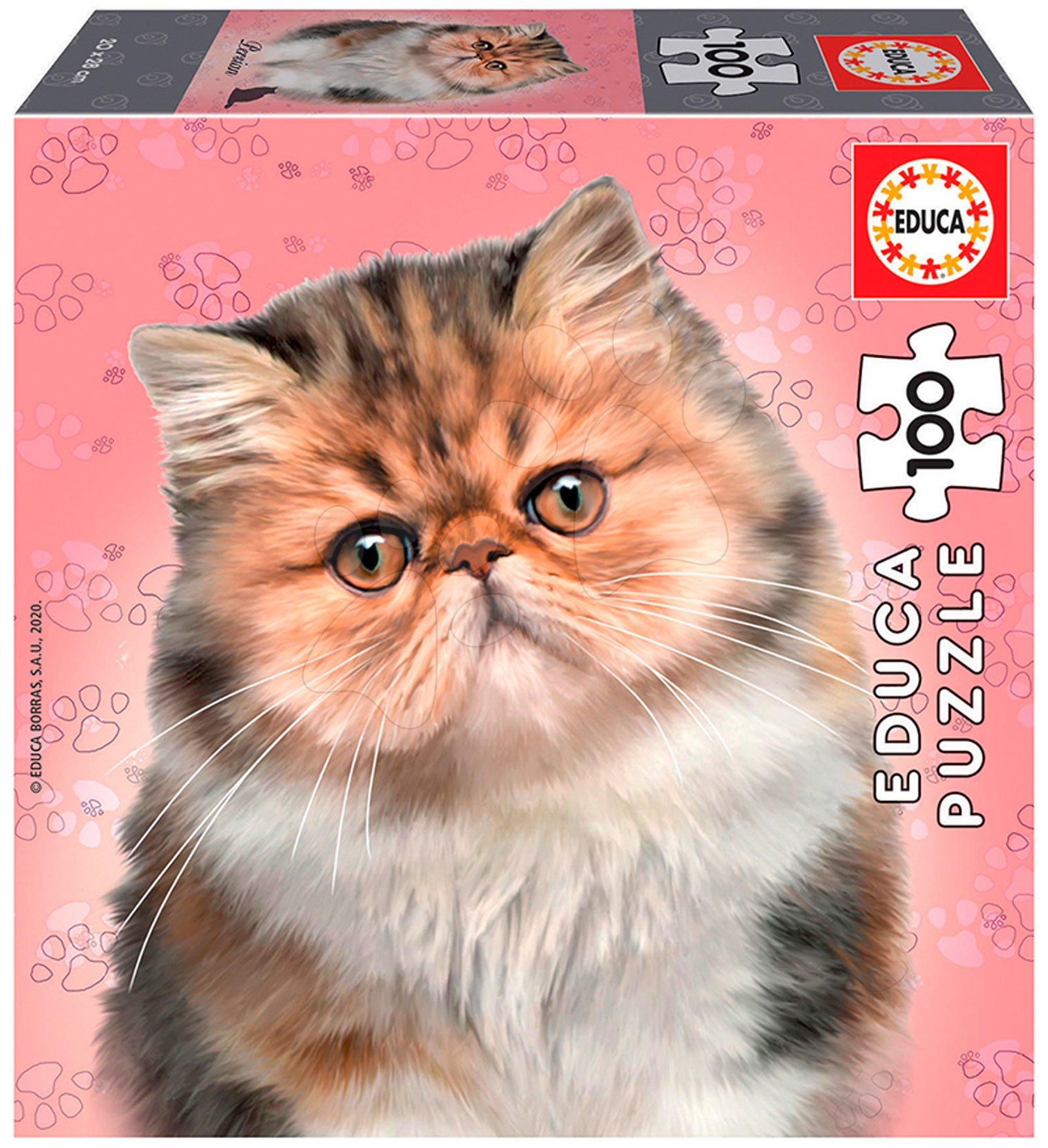 Puzzle Mini Box Persian Educa 100 dielov od 6 rokov