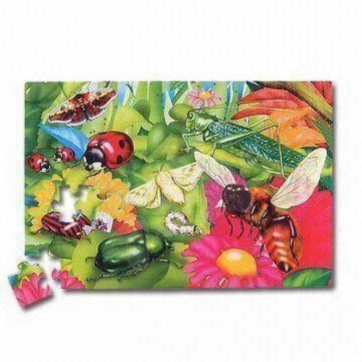 Pěnové puzzle - Pěnové puzzle Insect Hmyz Lee Chyun 54 dílů