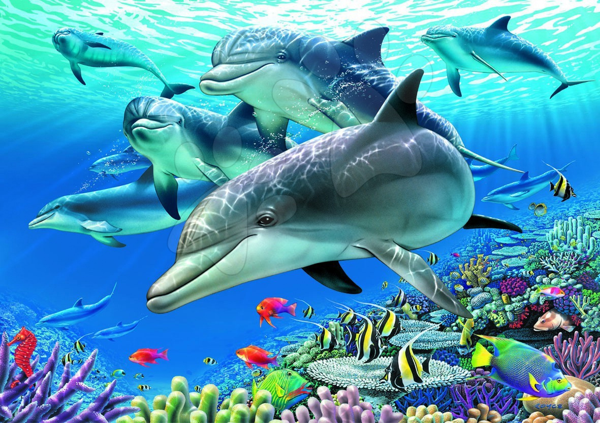 Puzzle Delfini Educa 1500 bucăţi 85 x 60 cm
