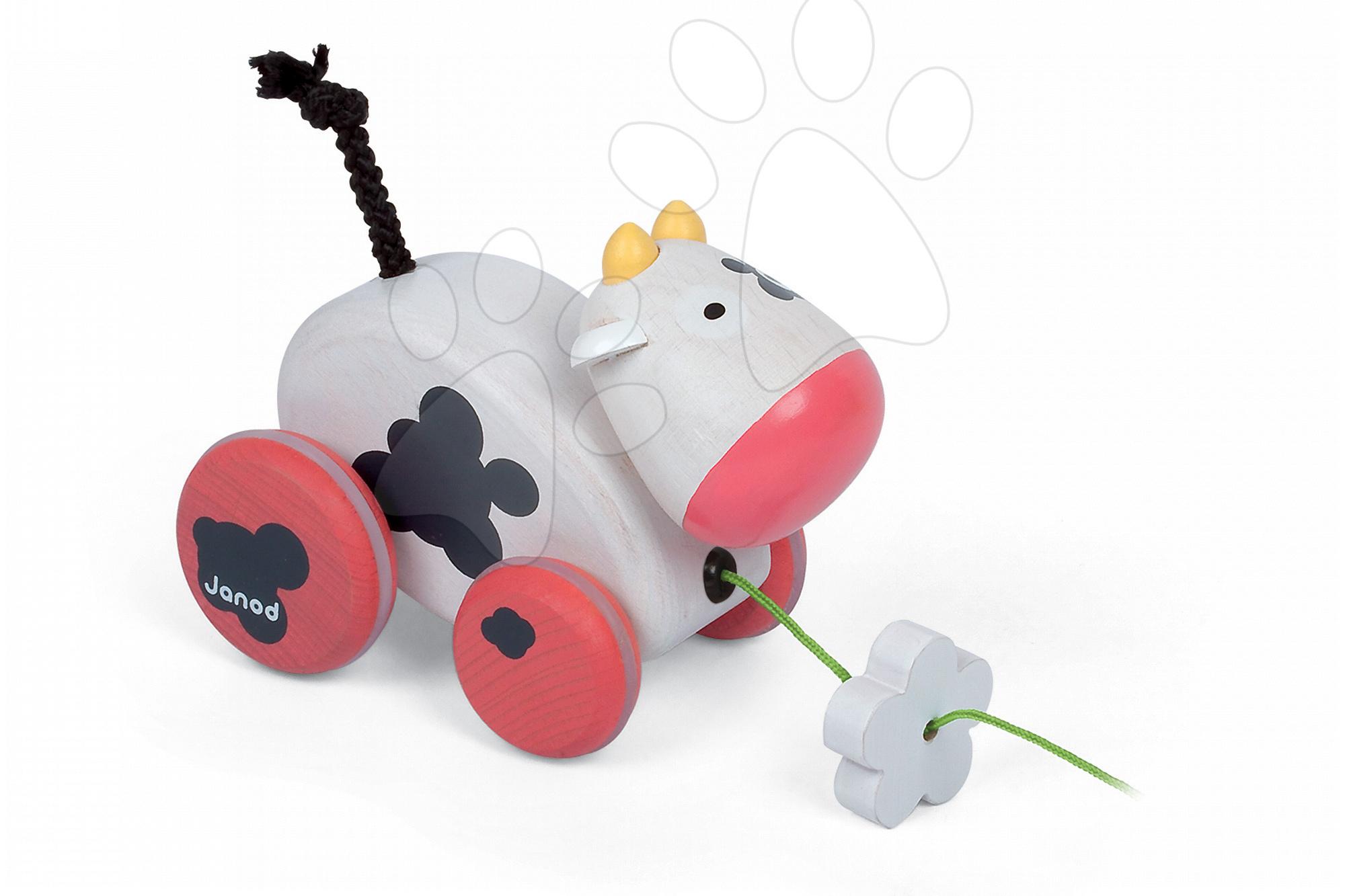 Ťahacie hračky - Drevená kravička Pull Along Janod na ťahanie so zvukom od 12 mes