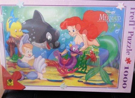 Puzzle Ariela Terfl Educa 1000 dílů
