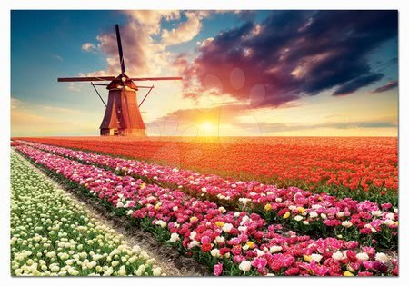1500 darabos puzzle - Puzzle Tulips Landscape Educa 1500 darabos és Fix puzzle ragasztó 11 évtől_1