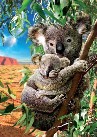 Puzzle 500 dílků - Puzzle Koala and Cub Educa 500 dílků a Fix lepidlo v balení od 11 let_1
