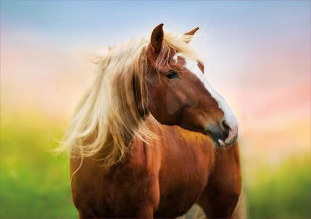 Puzzle 500 dílků - Puzzle Horse at Sunrise Educa 500 dílků a Fix lepidlo v balení od 11 let_1