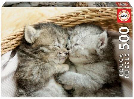 Puzzle 500 dílků - Puzzle Sweet Kittens Educa 500 dílků a Fix lepidlo v balení od 11 let