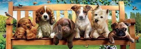 Panoramske puzzle - Puzzle panorama Puppies on a bench Educa 1000 delov in lepilo Fix puzzle od 11 leta_1