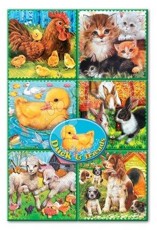 603 5b domace zvierata