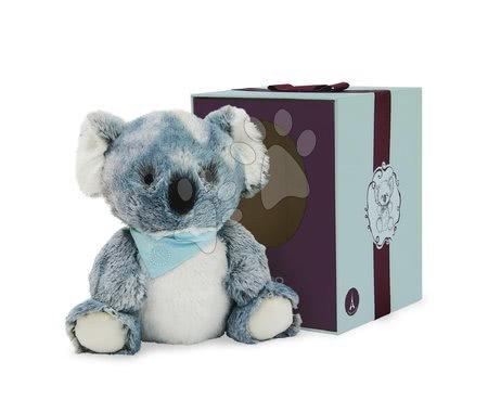 K963491 a kaloo koala