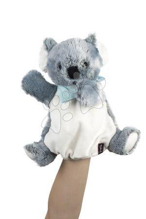 K963495 a kaloo koala
