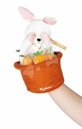 K963594 a kaloo zajac