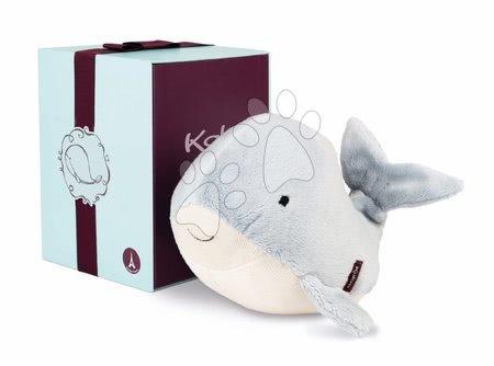 K969332 a kaloo velryba