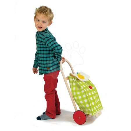 TL8254 g a tender leaf pull along shopping trolley
