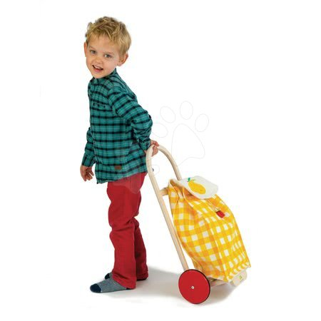 TL8254 y a tender leaf pull along shopping trolley
