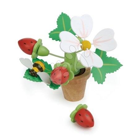 TL8356 a tender leaf strawberry flower pot