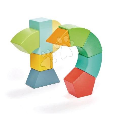 Dřevěné stavebnice Tender Leaf  - Dřevěná magnetická stavebnice Primary Magblocs Tender Leaf Toys 10 přírodních geometrických kostek v sáčku