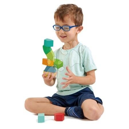 Dřevěné stavebnice Tender Leaf  - Dřevěná magnetická stavebnice Primary Magblocs Tender Leaf Toys 10 přírodních geometrických kostek v sáčku_1