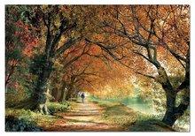 2000 delne puzzle - Educa 14819 PUZZLE 2000 delov Forever Autumn 96 x 68 cm + FIX PUZZLE LEPILO_0