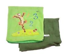 Pernă din pluş Tigru Winnie The Pooh Ilanit cu pătură verde 25*25 cm