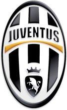 Staré položky - Penová lopta F.C. Juventus Mondo žltá 20 cm_0