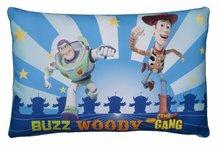 Pernă mică WD Toy Story 3 Ilanit 40*26 cm