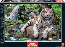 Puzzle 1000 dílků - 14808 c educa puzzle