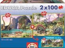 15620 b educa puzzle