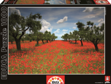 Puzzle Genuine Poppy Field Educa 1000 db 12 évtől