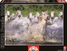 Puzzle Genuine White Camargue Horses Educa 1000 db 12 évtől