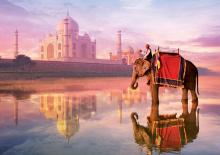 Puzzle 1000 dielne - Puzzle Genuine Elephant at Taj Mahal Educa 1000 dielov od 12 rokov_0