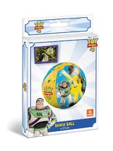 16763 c mondo beach ball