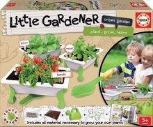 Malý záhradník - zelenina Tomato-Lettuce-Rocket Educa Nature so záhradníckymi potrebami od 5 rokov
