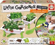 Malý záhradník - bylinky Strawberry-Mint-Basil Educa Nature so záhradníckymi potrebami od 5 rokov