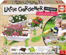 Malý záhradník - kvetiny Daisy - Zinnia - Cosmos of Japan Educa Nature so záhradníckymi potrebami od 5 rokov