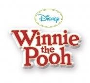 Produse vechi - Babytaxiu Winnie The Pooh Auto 2in1 Smoby verde de la 10 luni_4