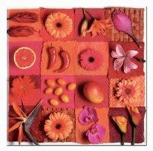 18454 d educa puzzle 3x500