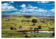 Puzzle 500 dielne - Puzzle Národný park Tsavo, Kenya Educa 500 dielov od 11 rokov_0