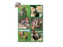 603 5e domace zvierata