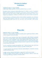 Společenské hry pro děti - Sada pohádkových společenských her Dohány Sněhurka, Červená Karkulka, Pinocchio, Malá mořská víla, Jeníček a Mařenka, Popelka od 5 let_13
