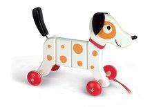 Drevený pes Rocky Janod na ťahanie s taškou od 12-36 mesiacov