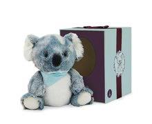 K963487 b kaloo koala